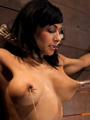 Nipples pull 1 way, neck rope pulls the other. 2 options breathe or suffer. All while cumming.